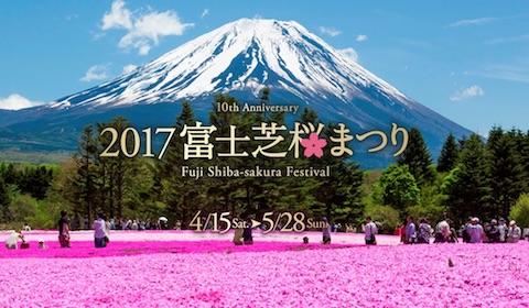 富士山と80万株の芝桜を堪能できる「2017富士芝桜まつり」は4月15日から5月28日まで開催